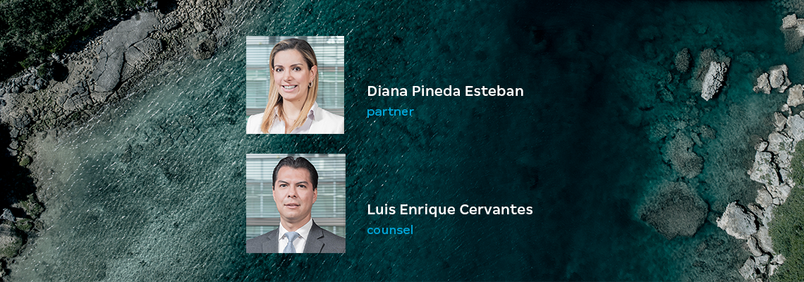 New partner promotion and counsel